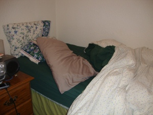 Wake up! Yes, that is a twin bed. And yes, I did then make it after this photo.