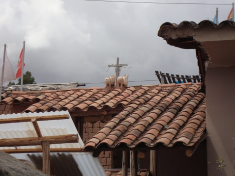 These bulls with crosses are on a lot of rooftops. They're supposed to bring good luck and fertility. I certainly had good luck on my trip. Can't speak to the other...