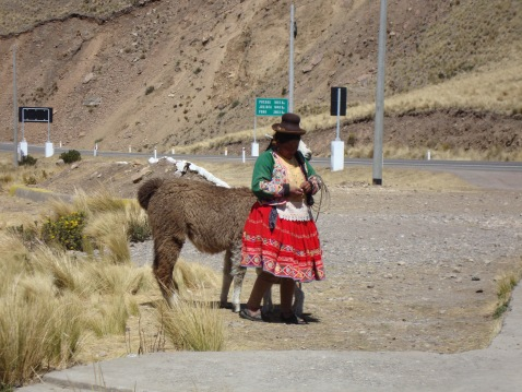 No, that's not a centaur. It's a woman standing next to a llama on the high plateau.