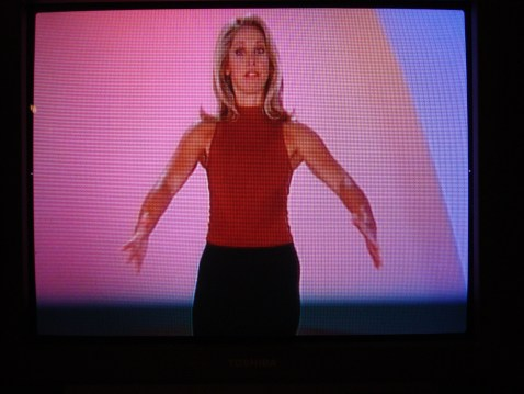 Denise Austin: Workout Guru.